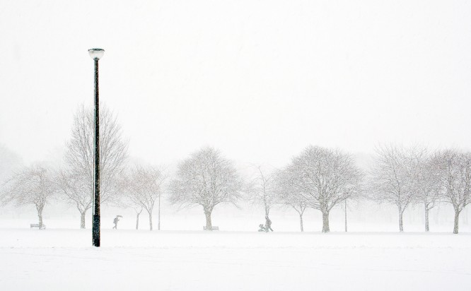 Snow In The Meadows